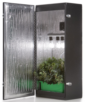 dealzer grow box