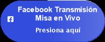 Facebook Transmisión </p> <p>Misa en Vivo
