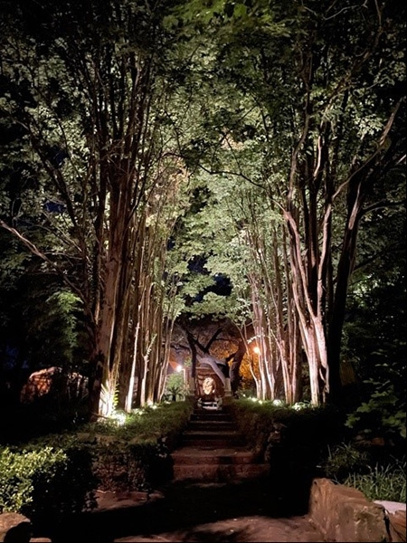 The Gardens at Night