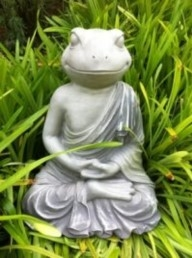 Yoga Frog