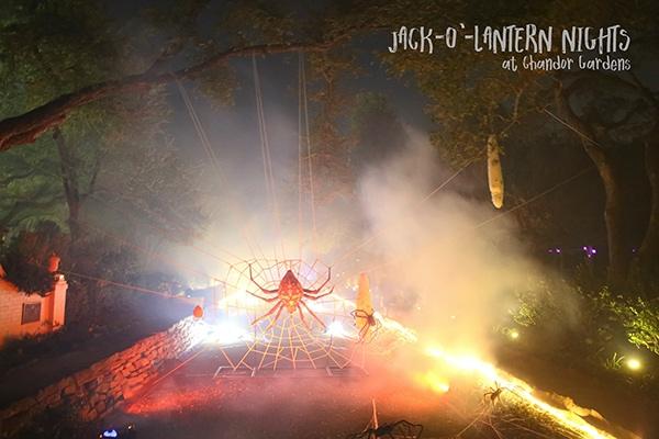 Jack-O Lantern Nights
