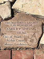 Ashley Deal's Memorial Garden