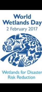 affiche World Wetlands Day