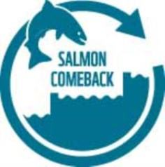 Logo Salmoncomeback