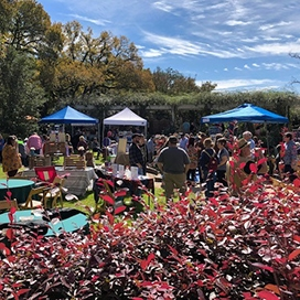 Autumn Art Walk Vendors