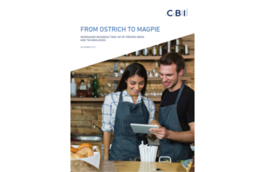 A CBI Report – From Ostrich to Magpie