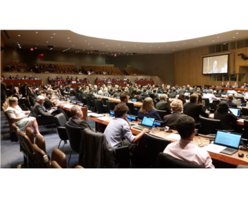 UN-GGIM 7th Assembly Endorses the Establishment of a Global Working Group on Marine Geospatial Information
