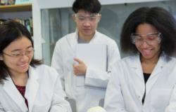 preparati all'ammissione a medicina in uk con un corso estivo